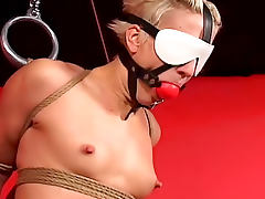 Lingerie, Babe, BDSM, Blindfolded, Blonde, Extreme