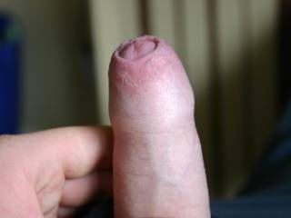 wow, love to suck that big boy , uncut mmm nice . pull back that skin an d nibble away