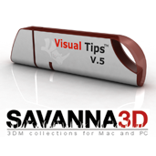 Rhino Visual Tips  5.0